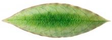 Тарелка Riviera Laurel leaf 18X6 CM