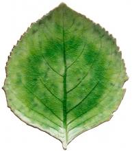 Тарелка Riviera Hydrangea leaf 22X19 CM