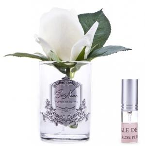 Ароматизированная роза Rose Bud ivory 8X8X14 CM