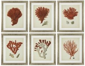 Постеры Antique Red Corals 68X58 / 68X58 / 68X58 / 68X58 / 68X58 / 68X58 CM