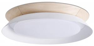 Потолочный светильник Tender LED 45X45X8 CM белый