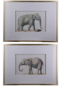 Диптрих Elephant 80X60 / 80X60 CM