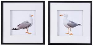 Набор из двух постеров Seagulls 56X56 CM
