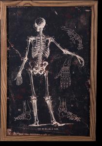 Картина Le plan The Bones 40X60 CM