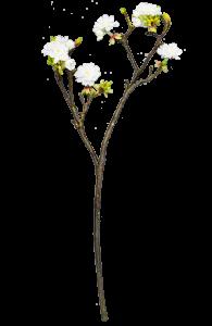 Растение искусственное Prunus Avium 11X24X64 CM