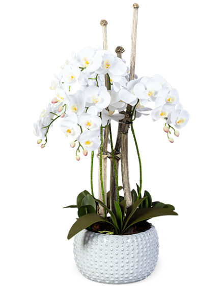 Орхидея в горшке искусственная 40X40X100 CM 1
