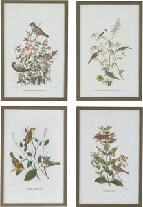Постеры Birds 40X60 / 40X60 / 40X60 / 40X60 CM