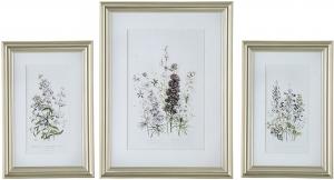 Постеры Wild flowers 42X62 / 60X80 / 42X62 CM