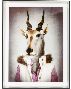 Постер Mr. Antelope 65X85 CM