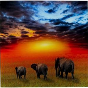 Постер на закаленном стекле Savanne Elefants 100X100 CM