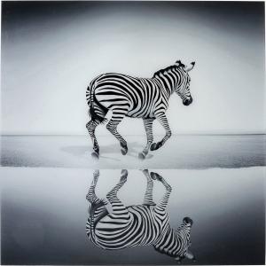 Постер на закаленном стекле Savanne Zebra 120X120 CM