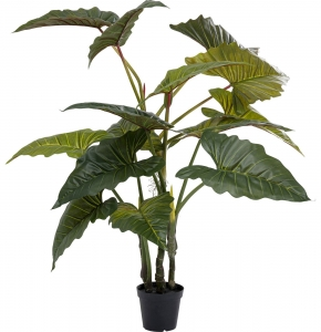 Искусственное растение колоказия Taro 40X40X200 CM