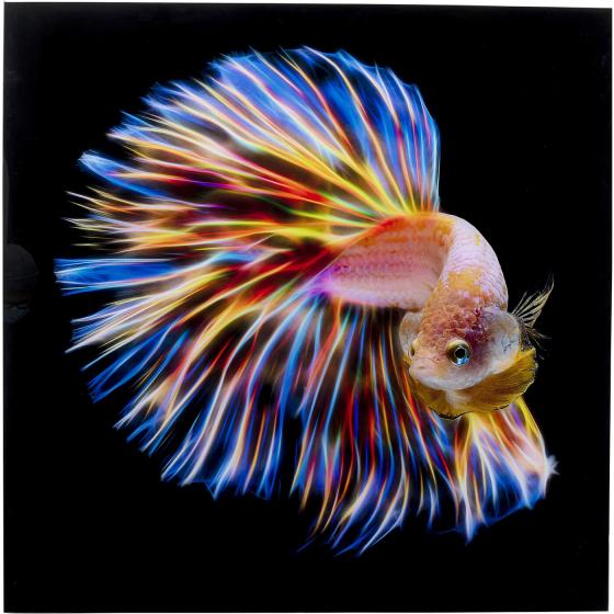 Постер на стекле Fish 100X100 CM 1