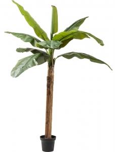 Искусственное травянистое растение Banana 40X40X190 CM