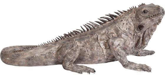 Напольный декоративный элемент Iguana 132X52X55 CM 1