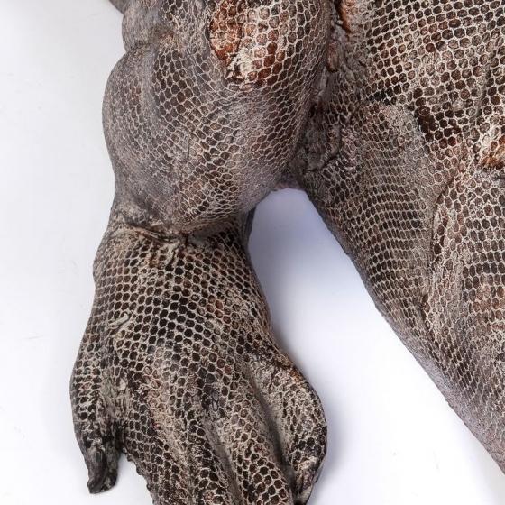 Напольный декоративный элемент Iguana 132X52X55 CM 4