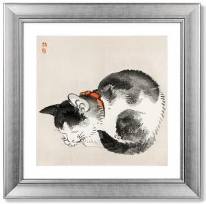 Постер Sleeping cat 61X61 CM