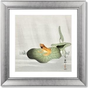 Постер Frog on lotus leaf 61X61 CM