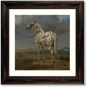 Постер The Piebald Horse 61X61 CM
