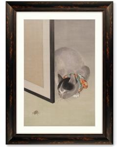 Постер Cat Watching a Spider 61X81 CM