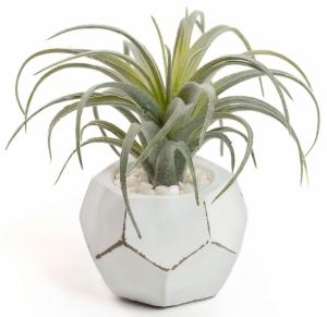 Искусственное растение Tillandsia 13X13X13 CM
