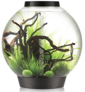 Сферический аквариум biOrb Classic 105 MCR 61X61X63 CM чёрный