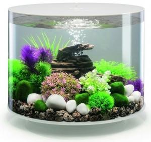 Круглый аквариум с обзором в 360° biOrb Tube 35 LED MCR 41X41X37 CM белый