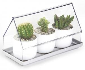 Лоток для выращивания растений Micro green house 24X11X14 CM