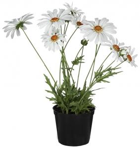 Искусственный цветок Marguerite 20X20X35 CM
